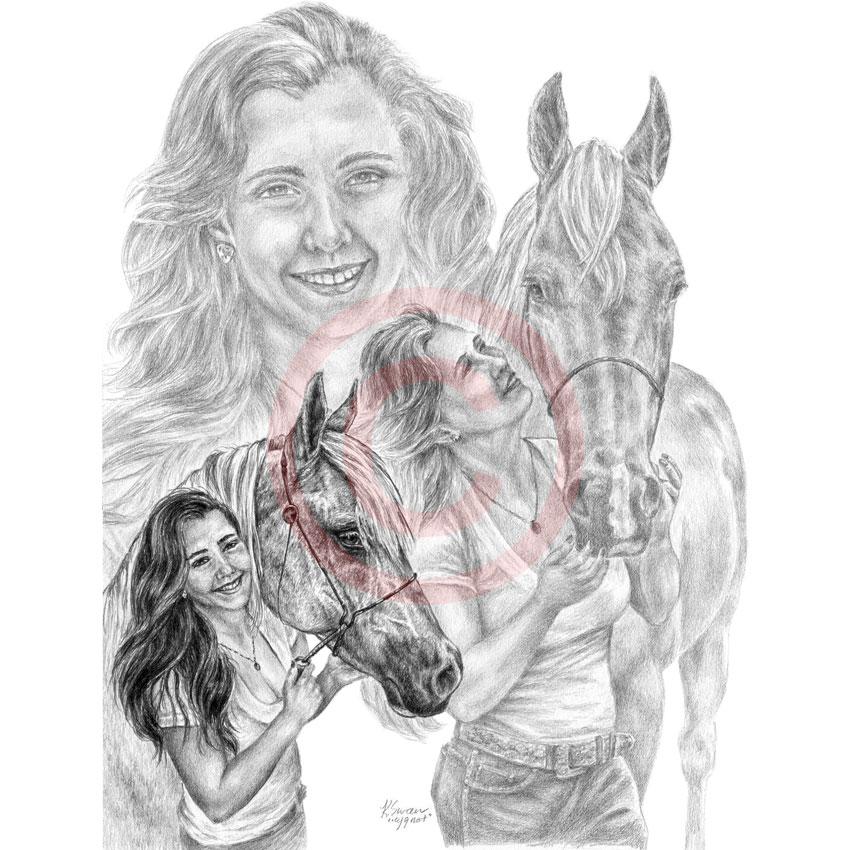 Arabian Horse Pencil Drawing
