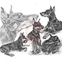 Custom montage pencil drawing of Doberman Pinschers