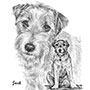 Jack Russell Terrier Dog - Custom Pencil Portrait
