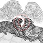 Labrador Dogs Pencil Pet Drawing