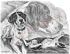 English Pointer Dogs drawing by Kelli Swan