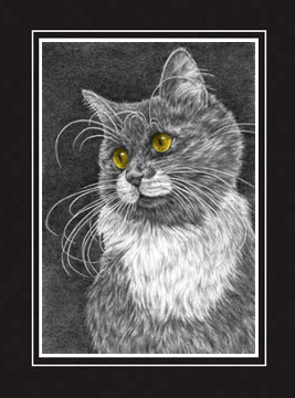 "Limited Edition Cat Print ""Whiskers"" by Kelli Swan"