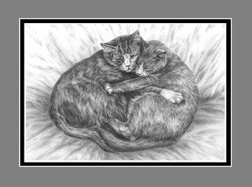 "Limited Edition Cat Art Print ""Cuddly Cats"" in Black & White, by Kelli Swan"