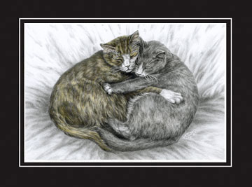 "Limited Edition Cat Art Print ""Cuddly Cats"" hand-tinted with color, by Kelli Swan"