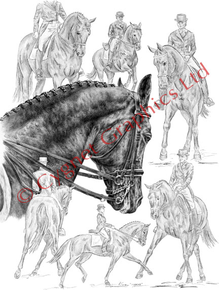Dressage horse montage drawing by Kelli Swan
