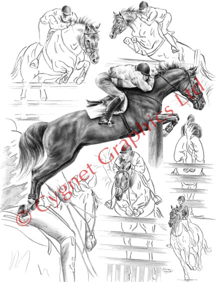 Jumper horse montage - pencil drawing by Kelli Swan