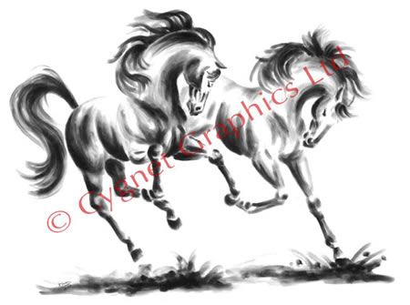 """Frolicking"" wild horse drawing by Kelli Swan"