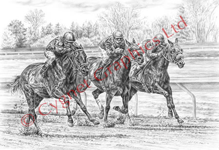"""Neck and Neck"" Thoroughbred horse drawing by Kelli Swan"