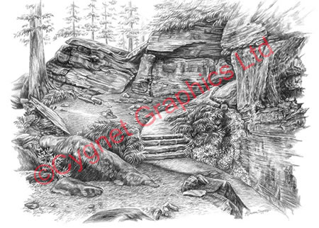 """Virginia Kendall Ledges - Approach to Ice Box Cave"" from the Cuyahoga Valley National Park pencil drawing series by Kelli Swan"