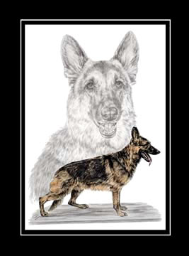 "Limited Edition Dog Print ""German Shepherds"" hand-tinted with color, by Kelli Swan"