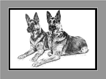 "Limited Edition German Shepherd Dog Print ""Two of a Kind"" in Black & White, by Kelli Swan"