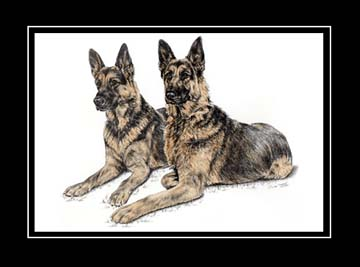 "Limited Edition German Shepherd Dog Print ""Two of a Kind"" hand-tinted with color, by Kelli Swan"