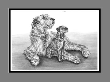"Limited Edition Irish Wolfhound Dog Print ""Full of Promise"" in Black & White, by Kelli Swan"