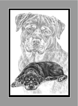 "Limited Edition Rottweiler Dog Print ""Rottie Charm"" in Black & White, by Kelli Swan"