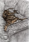 """Wake Me for Dinner"" Greyhound dog drawing by Kelli Swan"