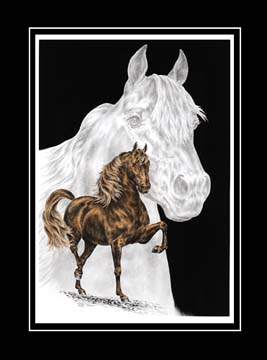 "Limited Edition Morgan Horse Print ""Body, Mind & Spirit"" hand-tinted with color, by Kelli Swan"