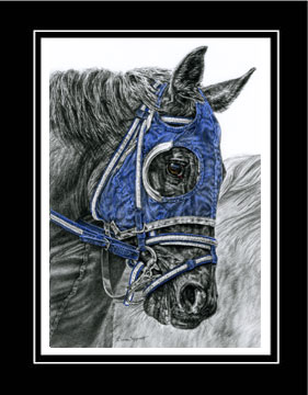 "Limited Edition Race Horse Print ""Ready, Set ... GO!"" hand-tinted with blue color, by Kelli Swan"