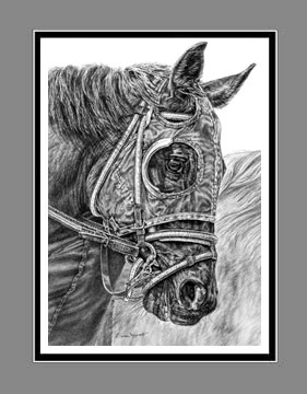 "Limited Edition Race Horse Print ""Ready, Set ... GO!"" in Black & White, by Kelli Swan"