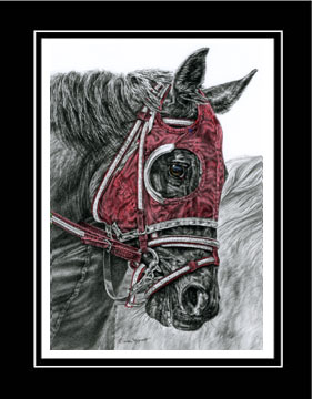 "Limited Edition Race Horse Print ""Ready, Set ... GO!"" hand-tinted with red color, by Kelli Swan"