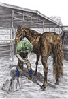 """Trim and Fit"" - farrier blacksmith w/horse pencil drawing"