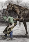 """Custom Made"" art - farrier blacksmith shoeing horse"