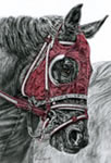 """Ready Set GO"" - Thoroughbred horses pencil drawing"
